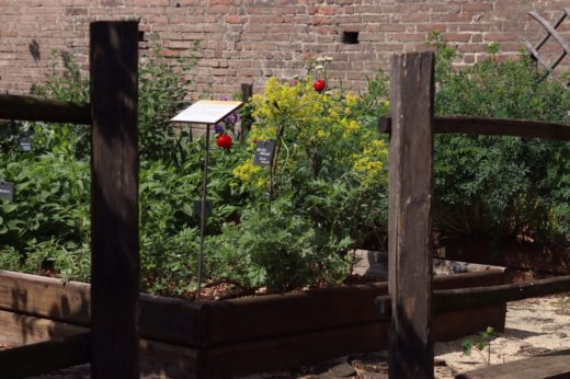 giardini storici a Torino_Turin tour_visita guidata verde
